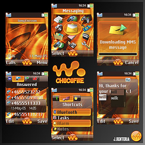 temas para Sony Ericsson W810