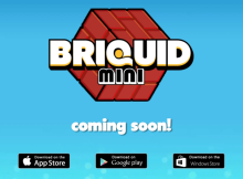Briquid-Mini