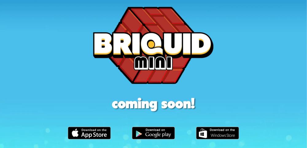 Briquid-Mini